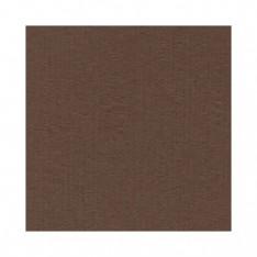 Лист текстурированного картона Carob, Bazzill Basics, 30×30 см, BZCL934