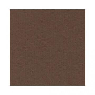 Купить Лист текстурированного картона Carob, Bazzill Basics, 30×30 см, BZCL934