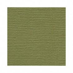 Лист текстурированного картона Palo Verde, Bazzill Basics, 30×30 см, BZCL590