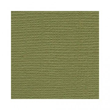 Купить Лист текстурированного картона Palo Verde, Bazzill Basics, 30×30 см, BZCL590