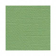 Лист текстурированного картона Guacamole, Bazzill Basics, 30×30 см, BZCL5103