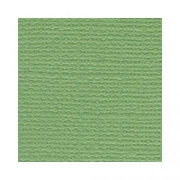 Купить Лист текстурированного картона Guacamole, Bazzill Basics, 30×30 см, BZCL5103