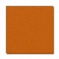 Лист текстурированного картона Tangelo, Bazzill Basics, 30×30 см, BZCL349