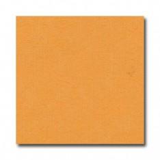 Лист текстурированного картона Mango, Bazzill Basics, 30×30 см, BZCL348