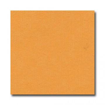 Купить Лист текстурированного картона Mango, Bazzill Basics, 30×30 см, BZCL348