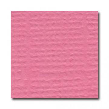 Купить Лист текстурированного картона Piglet, Bazzill Basics, 30×30 см, BZCL133