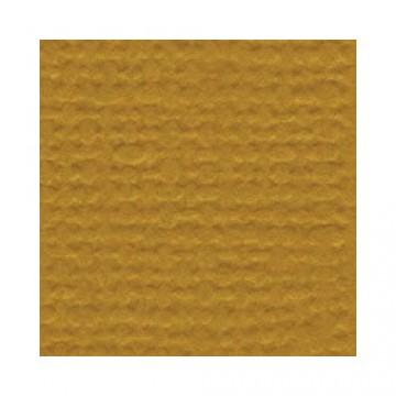 Купить Лист текстурированного картона Curry Spice, Bazzill Basics, 30×30 см, BZCL435