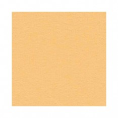 Лист текстурированного картона Citrus, Bazzill Basics, 30×30 см, BZCL347