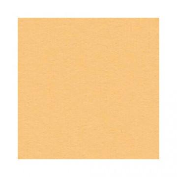 Купить Лист текстурированного картона Citrus, Bazzill Basics, 30×30 см, BZCL347