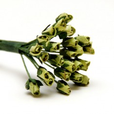 Букет роз Lime Minute Rosebuds, B1699LIM