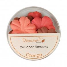 Набор цветов Orange, Dovecraft, DCBB01